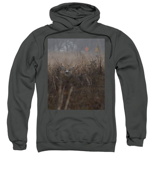 Big Buck Sweatshirt