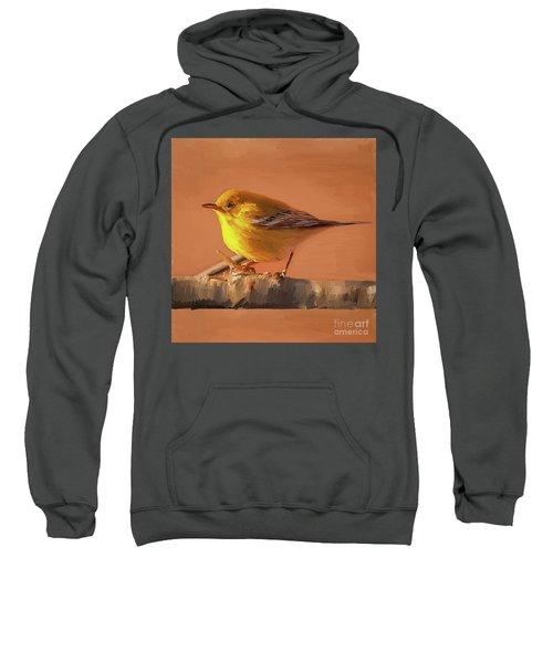 Bird 02a Sweatshirt