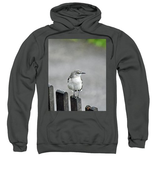 Bird Of Strawberry Hill Sweatshirt