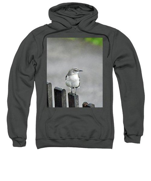 Bird Of Strawberry Hill Sweatshirt