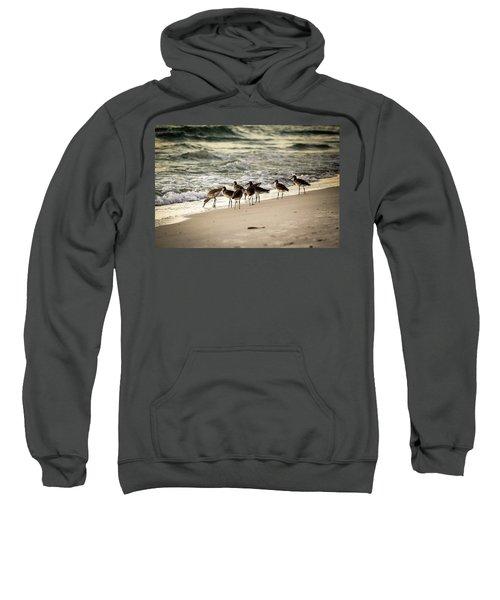 Birds On The Beach Sweatshirt