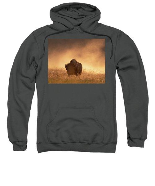 Bison In The Dust 2 Sweatshirt