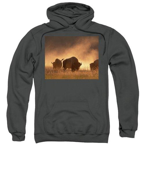 Bison In The Dust Sweatshirt