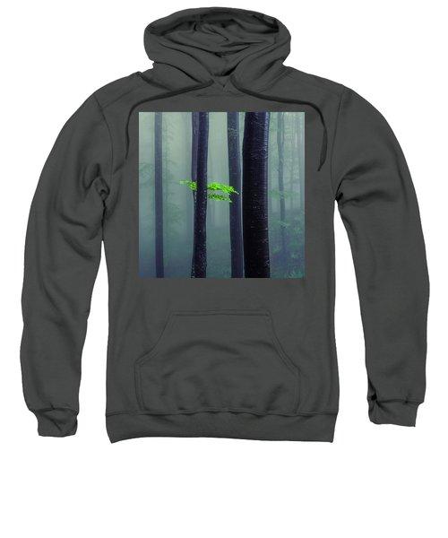 Bit Of Green Sweatshirt