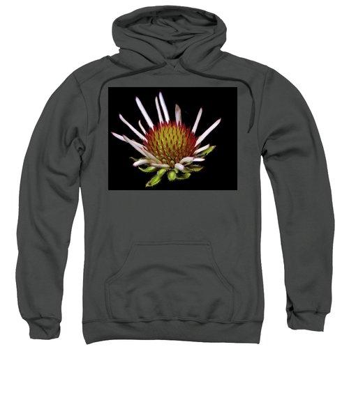 Black Sampson Sweatshirt