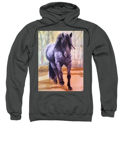 Black Stallion Sweatshirt
