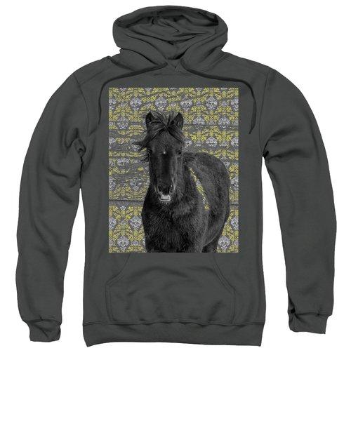 Blackie Sweatshirt