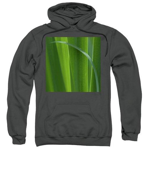 Blades 8587 Sweatshirt
