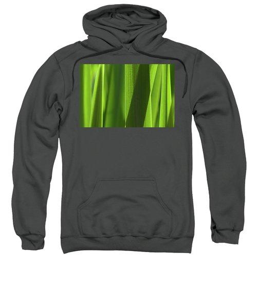Blades 8851 Sweatshirt