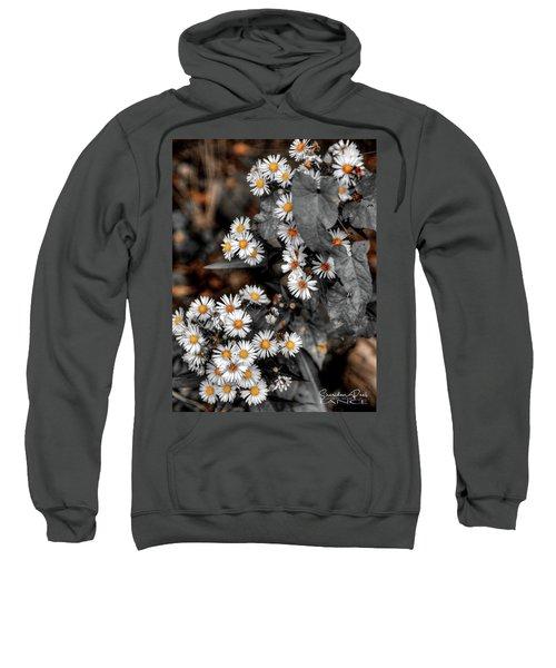 Blended Daisy's Sweatshirt