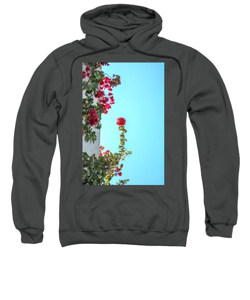 Blooming Beauty Sweatshirt