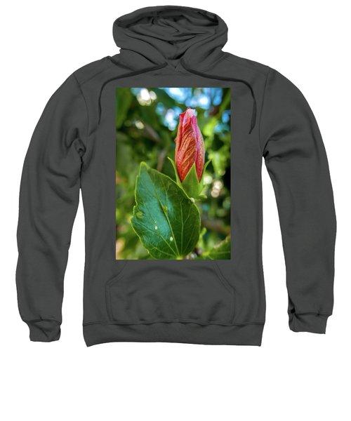 Blooming Hibiscus Sweatshirt
