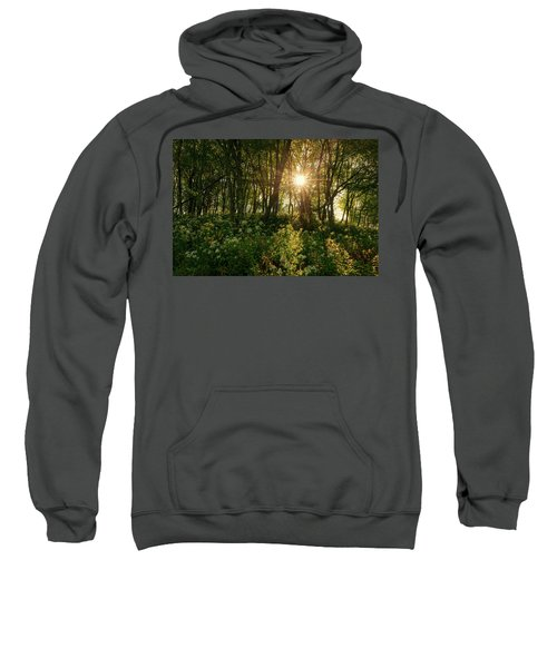Blue Ridge Parkway - Last Of Summers Light, North Carolina Sweatshirt