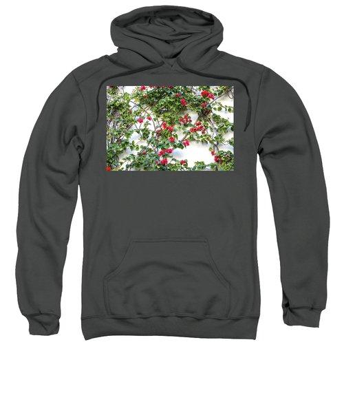Blushing Blooms Sweatshirt