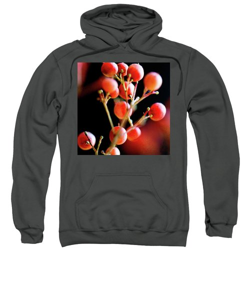 Brazilian Pepper 0423 Sweatshirt