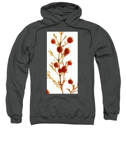 Brazilian Pepper 0482 Sweatshirt