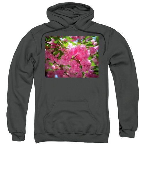 Bright Pink Blossoms Sweatshirt