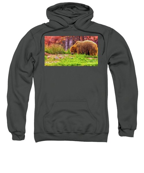 Brisk Walk Sweatshirt