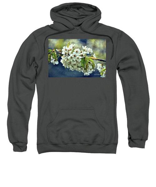 Budding Blossoms Sweatshirt