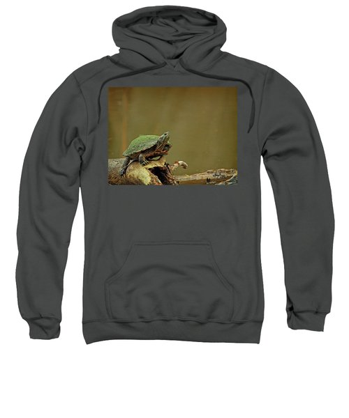 Bump On A Log Sweatshirt