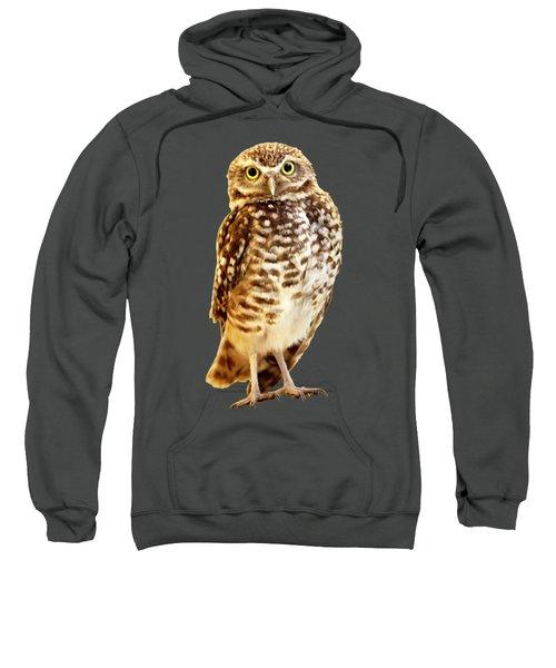 Burrowing Owl 1 Canvas Print,photographic Print,art Print,framed Print,greeting Card,iphone Case, Sweatshirt