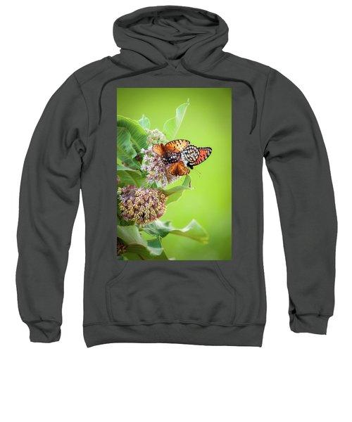 Butterfly Buffet II Sweatshirt