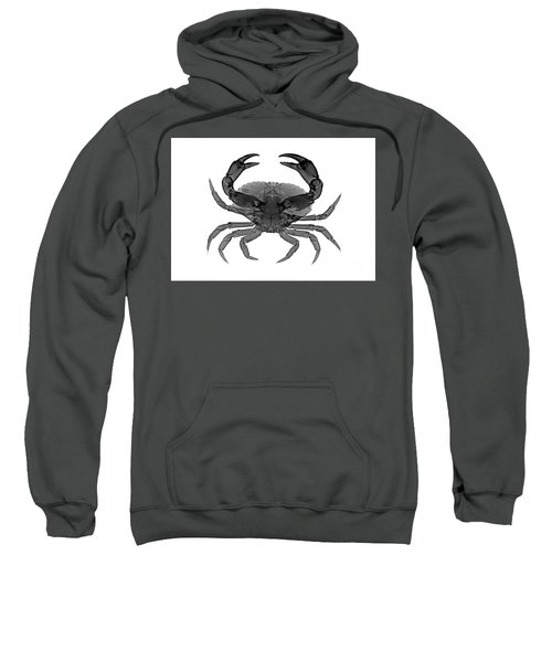 C033/7468 Sweatshirt
