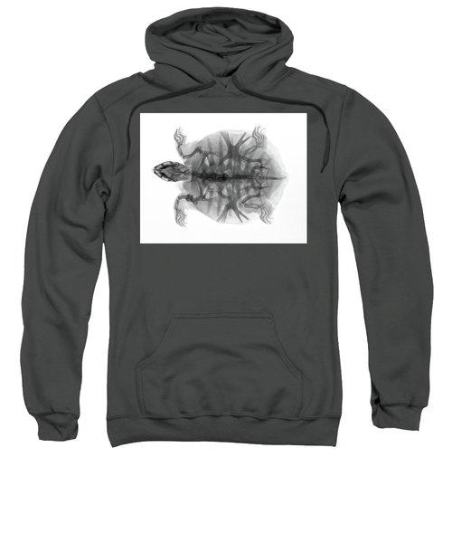 C035/4924 Sweatshirt