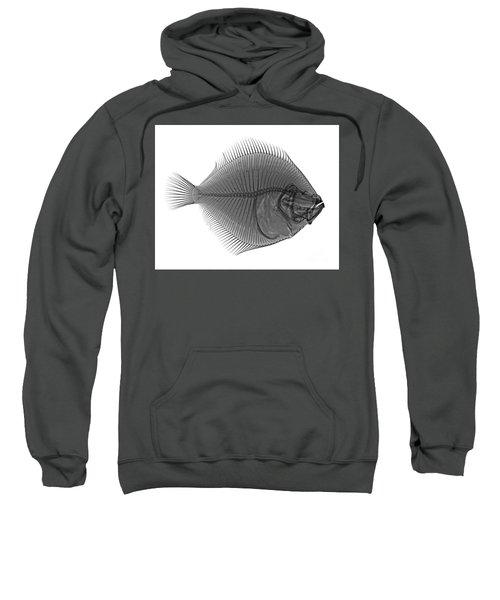 C036/0124 Sweatshirt