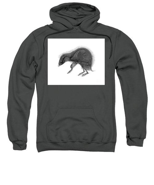 C037/9600 Sweatshirt
