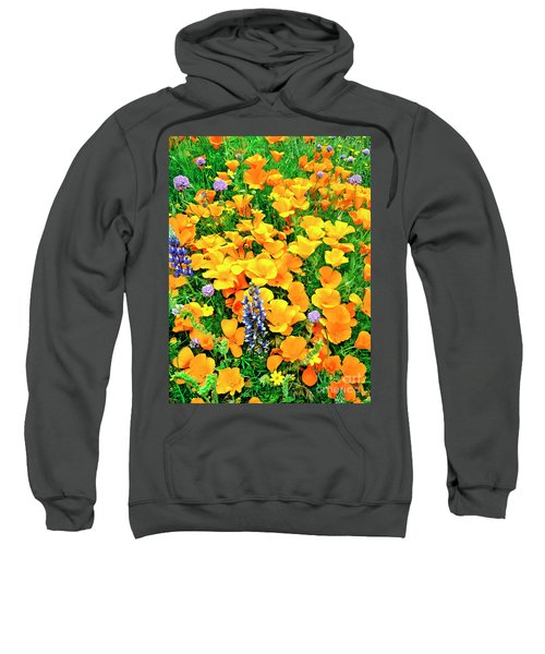 California Poppies And Betham Lupines Southern California Sweatshirt