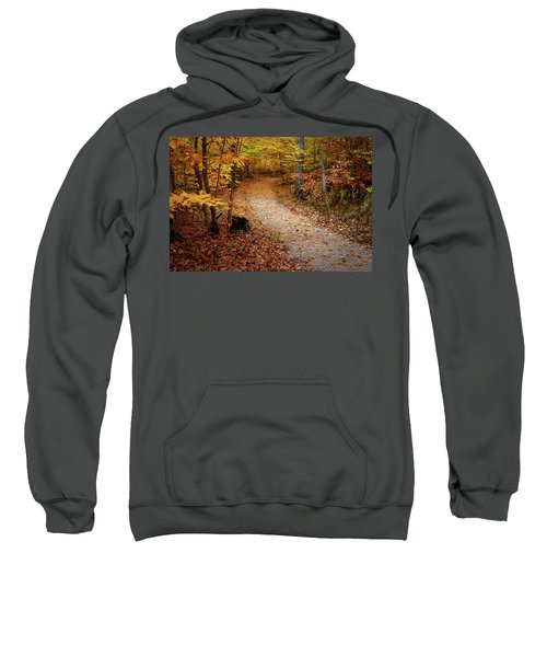 Canopy Of Color Sweatshirt
