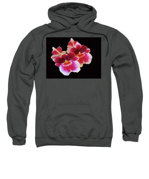 Canvas Violets Sweatshirt