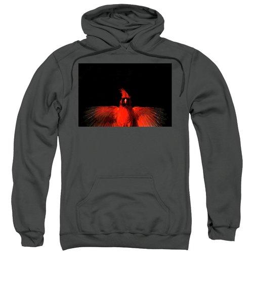 Cardinal Drama Sweatshirt