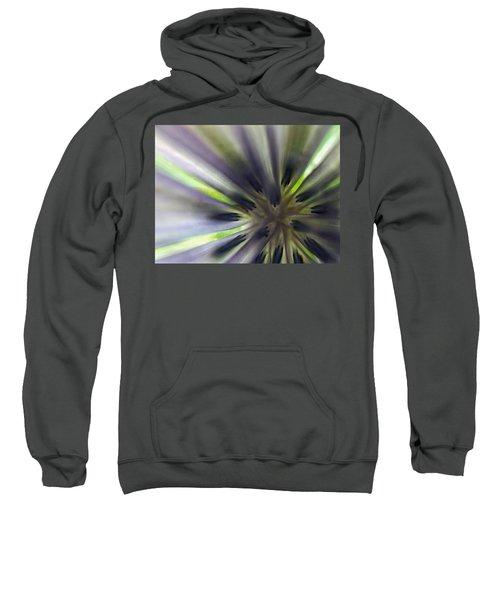 Chicory Flower Closeup Sweatshirt