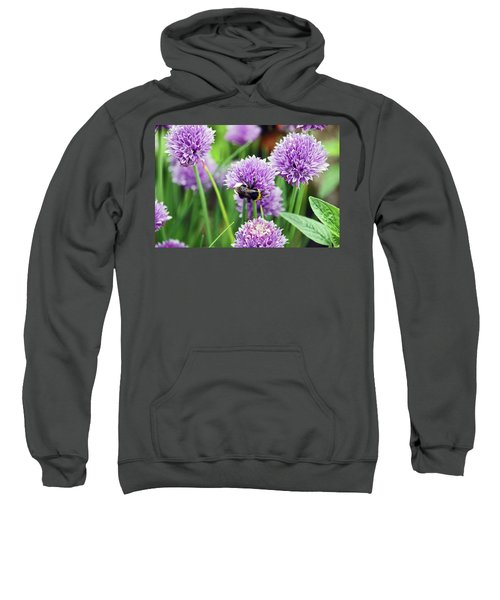 Chorley. Picnic In The Park. Bee In The Chives. Sweatshirt