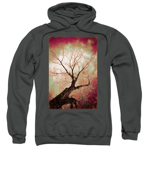 Sweatshirt featuring the photograph Climbing Red Fiery by James BO Insogna