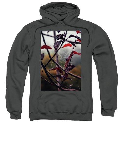 Cobweb Sweatshirt