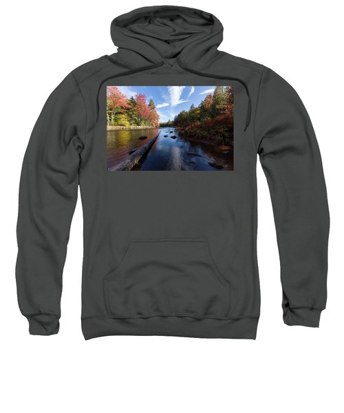 Color In The Dacks Sweatshirt