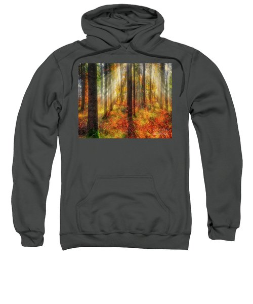 Colours Of Nature 02 Sweatshirt