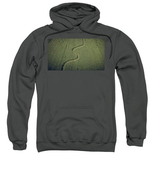 Corn Field Sweatshirt
