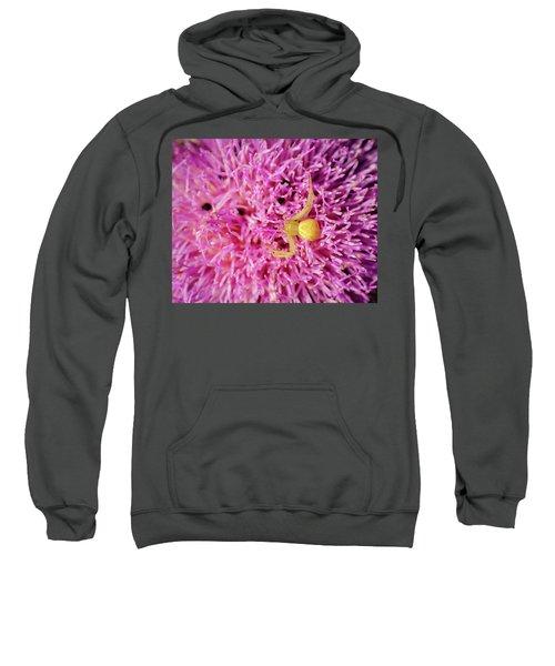 Crab Spider Sweatshirt