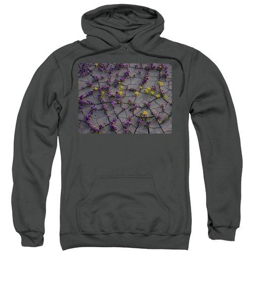 Cracked Blossoms II Sweatshirt