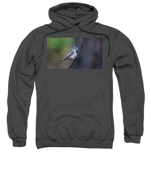 Crested Tit On A Twig Sweatshirt