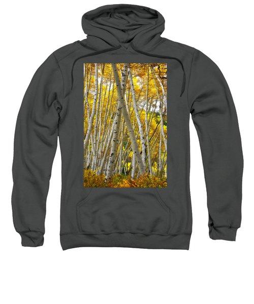 Crossed Aspens Sweatshirt