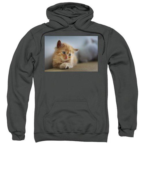 Cute Orange Kitty Sweatshirt