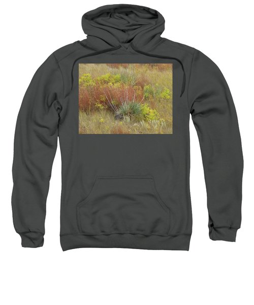 Dakota Prairie Brocade Sweatshirt