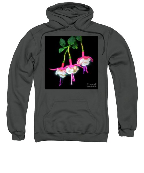 Dancing Fuchsia Abstract Sweatshirt