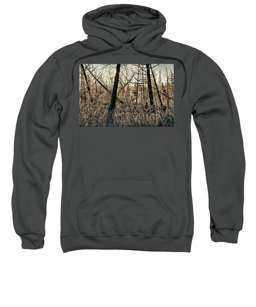 Deep Frost Sweatshirt