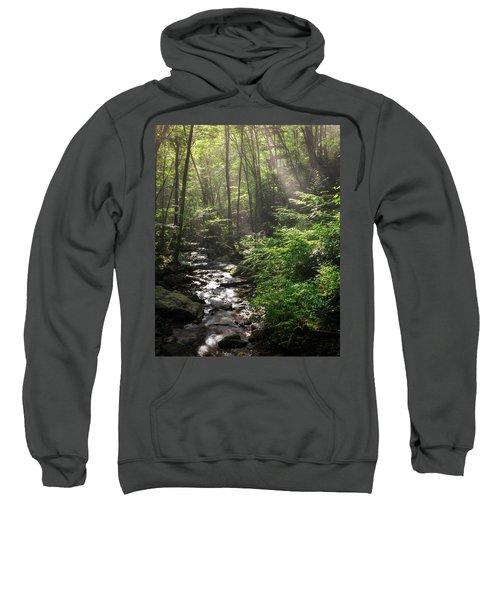 Deep In The Forrest - Sun Rays Sweatshirt